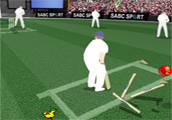 Cricket Challenge