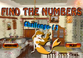 Find the Numbers Challenge  12