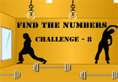 Find the Numbers Challenge  8