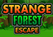 Strange Forest Escape