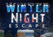 Winter Night Escape